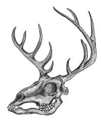 skull with horns image vector clip art online royalty free