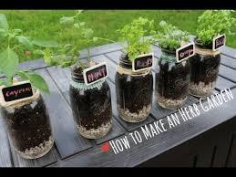 Indoor Herbal Garden How To Indoor Herb Garden Youtube
