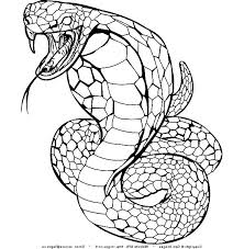 cobra coloring pages