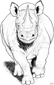 black rhino running coloring page free printable coloring pages