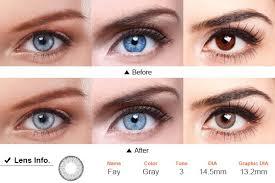 light grey contact lenses eos fay 3 tone grey colored contact lenses circle lenses maplelens