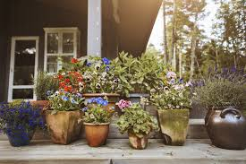 best planters the 8 best planters to buy in 2018