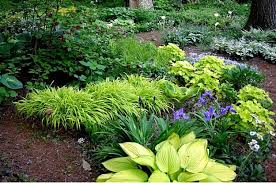Garden Tips And Ideas Shade Garden Plans Smart Design Tips And Ideas For A Shaded Garden