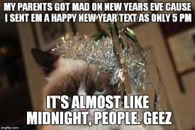 Grumpy Cat New Years Meme - grumpy cat new years imgflip