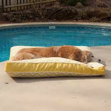 awesome dog bed outdoor 64 raised dog bed outdoor extra large dog