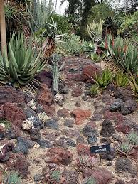 Simple Rock Garden Desert Rock Garden Simple Rock Gardens Lava Rock Garden Garden