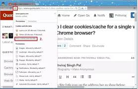 clear cookies how to clear cookies cache for a single website in the chrome