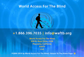 Blind Veterans Of America World Access For The Blind Who We Are