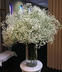 affordable flowers most affordable wedding flowers wedding corners