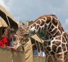 Louisiana wildlife tours images Global wildlife center in folsom la jpg