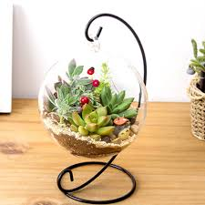 compare prices on garden glass online shopping buy low price