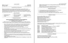 Resume Tips Resume Tips Resume by Professional Resume And Cv Samples