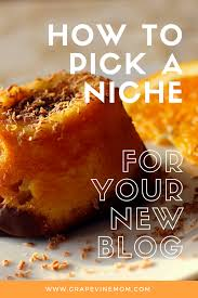 Home Decor Mom Blogs by How To Pick A Niche For Your New Blog Grapevinemom Com