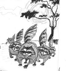 raccoon sketches steve richter art