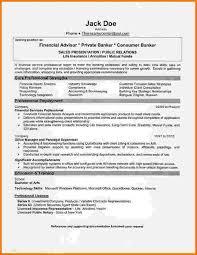 Financial Advisor Resume Samples 10 Financial Consultant Resume Sample Financial Statement Form