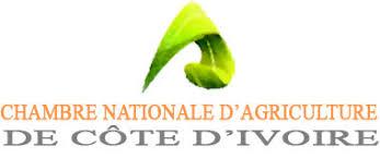 chambre nationale cna ci chambre nationale d agriculture de côte d ivoire chambres