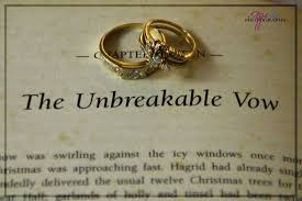 vow renewal wording harry potter for your wedding ceremony script marry me in indy llc
