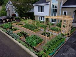 backyard vegetable garden ideas for small yards archives