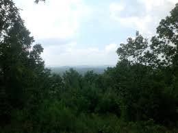 120 acres timberland hunting land for sale near millerville in