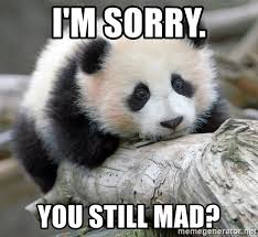 U Still Mad Meme - i m sorry you still mad sad panda meme generator