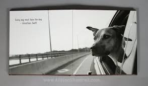 dog photo albums rhodesian ridgeback archives san diego pet photographer allison
