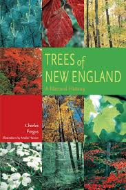 native plants of new england trees of new england a natural history charles fergus amelia