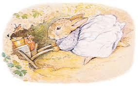 peter rabbit garden