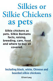buy keeping chickens keeping chickens as pets a beginners guide