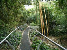 bureau des paysages alexandre chemetoff chemetoff 1950 jardin de bambous 1986 87 3 ha la