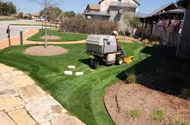 best practices for fertilizing and mowing grass in dry weather or