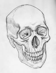 pencil sketch of geometric skull in 2017 real photo pictures