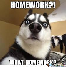 Homework Meme - homework by shaibzthepakieagle meme center
