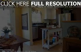 mobile home interior design ideas best 25 single wide ideas on