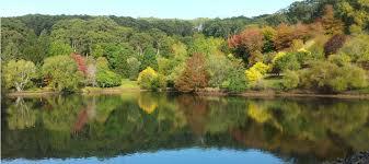 Mt Lofty Botanic Gardens Don T Miss The Autumn Colours Of Mount Lofty Botanic Garden