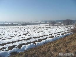 landwirtschaftliche fläche kaufen grundstück kaufen schwarzach landwirtschaftliche fläche acker in