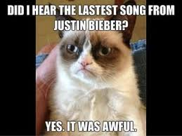 Mad Kitty Meme - frowning ifunny