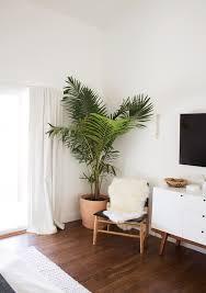 Best 25 Plant Decor Ideas On Pinterest House Plants | best 25 plant decor ideas on pinterest house plants plants with