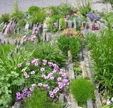 public rock gardens north american rock garden society