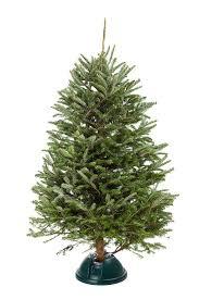 Krinner Christmas Tree Genie Xxl by Amazon Com Black Decker Smart Stand 17