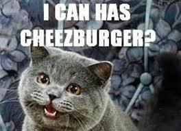 Cheezburger Meme Builder - 5 crazy business ideas that made millions