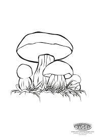 cartoon mushroom coloring pages king bolete coloring mushrooms