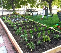 designing vegetable garden layout design a garden layout ideas with how to and kg formal garden trends