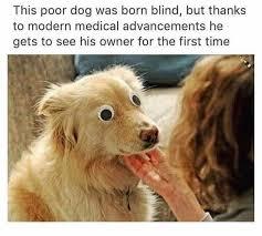 1 Like 1 Prayer Meme - 227 best puns and visual jokes images on pinterest