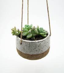 Ceramic Succulent Planter by Best 25 Ceramic Planters Ideas On Pinterest Ceramica Ceramics
