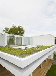 home design house s u2013 two storey bungalow with green rooftop