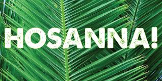 palm for palm sunday who is this sermon for palm sunday matthew 21 1 11 jesus