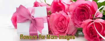 Flowers For Mom Mother U0027s Day Flowers Gifts 2017 Mother U0027s Day 2017 Celebrations