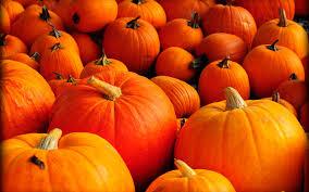 halloween pumpkin desktop wallpaper pumpkin desktop wallpapers wallpaperpulse
