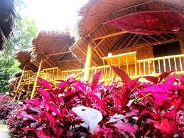 best price on phi phi hill bamboo bungalow in koh phi phi reviews