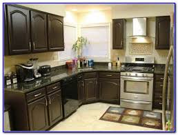 kitchen paint color ideas with dark cabinets painting home